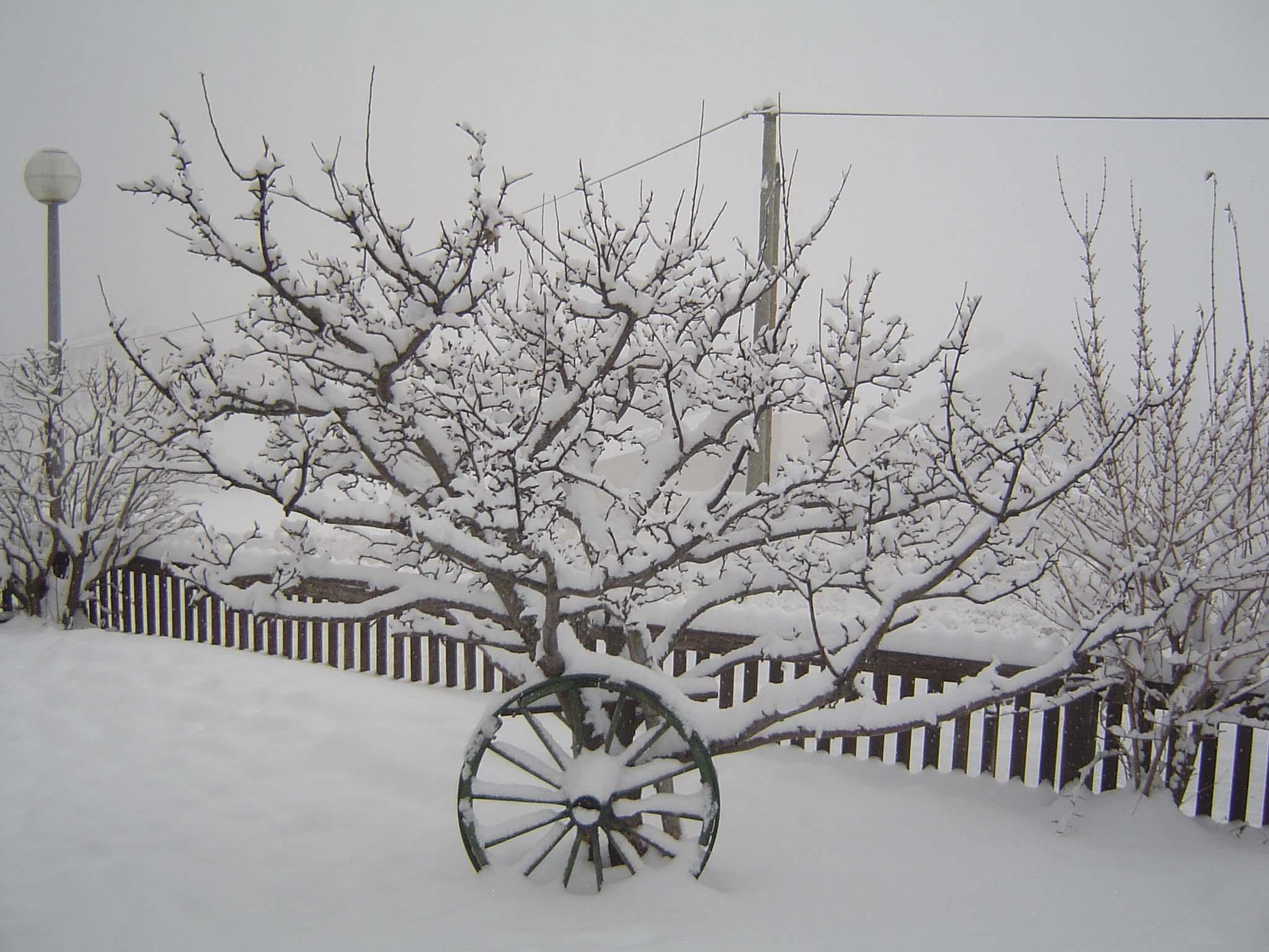 Auron en hiver